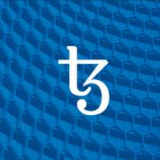 Tezos, la blockchain aux racines françaises qui veut concurrencer Ethereum