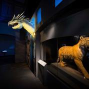 À Londres, Les Animaux fantastiques envahissent le Musée d'histoire naturelle