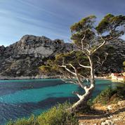 Le Congrès mondial de la nature se réunira début septembre 2021 à Marseille