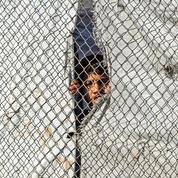 Enfants français retenus en Syrie : la CNCDH redemande leur rapatriement