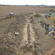 Cinq poilus identifiés dans les Ardennes, un siècle après la Grande Guerre