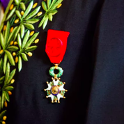 Covid-19 : un médecin reçoit la Légion d'honneur à titre posthume