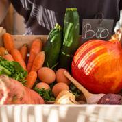 La FNSEA prône un «chèque alimentaire» pour les plus modestes
