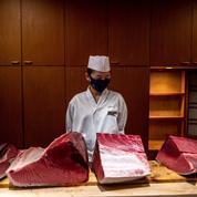 À Tokyo, l'empereur du sushi refuse les folles enchères sur le thon rouge