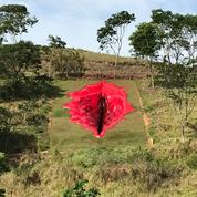 Au Brésil, une sculpture de vulve géante veut dénoncer les «tabous sexuels imposés aux femmes»
