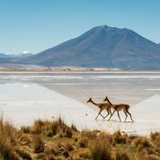 Cinq raisons de partir explorer le Chili cette année