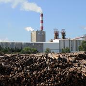 L'Etat prêt à un nouveau soutien financier pour une importante usine de pâte à papier