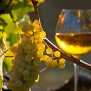 Vins et spiritueux français: une nouvelle salve de taxes américaines entre en vigueur ce mardi