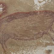 En Indonésie, une fresque représentant un sanglier est la plus ancienne connue pour un animal
