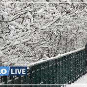Épisode neigeux dans le Grand-Est : coupures d'électricité en Alsace, circulation difficile en Lorraine