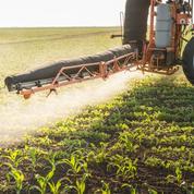 Pesticides : manifestation d'agriculteurs contre les zones de non-traitement