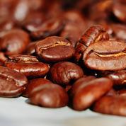 Sécheresse: la récolte de café 2021 attendue en forte baisse au Brésil