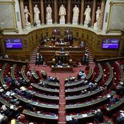 Plongée dans le quotidien perturbé des jeunes sénateurs, qui découvrent la vie parlementaire à l'heure du Covid