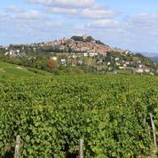 Tarn-et-Garonne : démantèlement d'une filière de travailleurs agricoles marocains