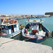 Les pêcheurs français évaluent leur baisse de chiffre d'affaires entre 30% et 40% en 2020