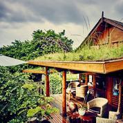 Dix hébergements pour se la couler douce à La Réunion