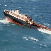 Un pétrolier échoué il y a 41 ans empoisonne des oiseaux en pleine mer en Bretagne Nord