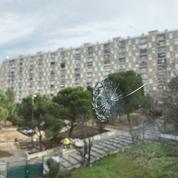 Impacts de balles sur une école : l'appel à l'aide de la maire du 13e arrondissement de Marseille