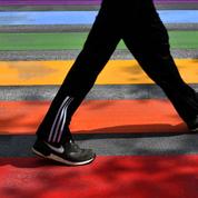 Strasbourg : un couple homosexuel insulté et menacé par plusieurs individus