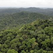 Montagne d'or en Guyane : recours de l'État contre la prolongation de la concession minière