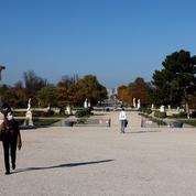 Les Tuileries se refont une beauté avec une allée d'ormes comme avant la Révolution