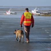 Morbihan : une jeune fille meurt emportée par une vague