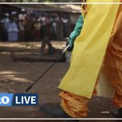 Ebola : la Guinée est à nouveau en «situation d'épidémie» avec 7 cas confirmés, dont 3 décès