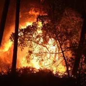 Pays basque : près de 800 hectares de végétation détruits dans un incendie