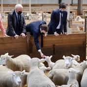 Macron visite une ferme, à défaut du salon de l'agriculture