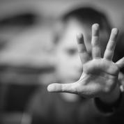 Inceste : un groupe de travail pour renforcer prévention et détection à l'école