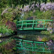 À l'ombre des musées et des monuments, la réouverture des jardins reste nimbée d'incertitudes