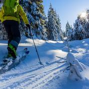 Faut-il tenter le ski de randonnée nordique ou «backcountry» ?