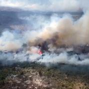 Argentine : des blessés et disparus lors d'incendies en Patagonie