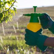 Gironde, Marne, Charente-Maritime identifiés comme les plus gros utilisateurs de pesticides