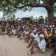 Au Mozambique, l'inquiétant activisme de cellules affiliées à l'État islamique