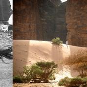 Ces voyages qui les ont inspirés : l'Arabie saoudite de l'auteure Francisca Mattéoli