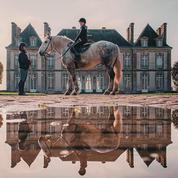 En Normandie, cinq expériences qui raviront les passionnés de chevaux
