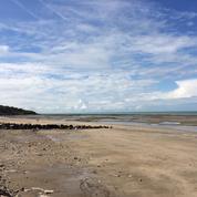 Normandie : les cinq plus belles plages de la Côte fleurie et de la Côte de Nacre