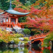 Le Japon au bout des doigts en trois expériences flamboyantes