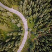 Canada: disparu depuis trois jours dans une forêt, un enfant de 3 ans retrouvé sain et sauf