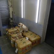 Pyrénées-Atlantiques : les douaniers d'Hendaye mettent la main sur 600 kg de cannabis