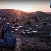 Ethiopie : les troupes érythréennes combattant dans la région du Tigré ont commencé à évacuer