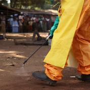 Ebola en Guinée: des femmes bloquent l'accès à leur village au personnel de santé