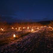 Les feux allumés par les arboriculteurs à l'origine d'un voile de pollution sur le Rhône