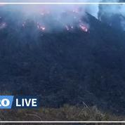 Éruption du volcan de l'île caribéenne de Saint-Vincent, des milliers d'évacuations