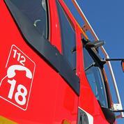 Charente-Maritime : il avoue avoir déclenché le feu de forêt en venant s'occuper de plants de cannabis