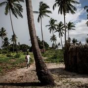 Attaque au Mozambique: 12 corps décapités découverts près d'un hôtel à Palma