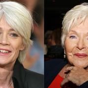 Françoise Hardy et Line Renaud en faveur de l'euthanasie