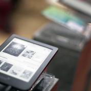 Piratage de Millénium, Harry Potter ou des Goncourt: douze personnes face aux grandes maisons d'édition