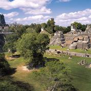 Une nouvelle pyramide découverte sur le site maya de Tikal